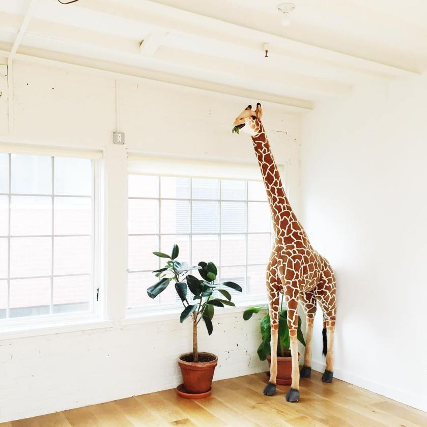 Quick Guide to Boutique Studios in NY