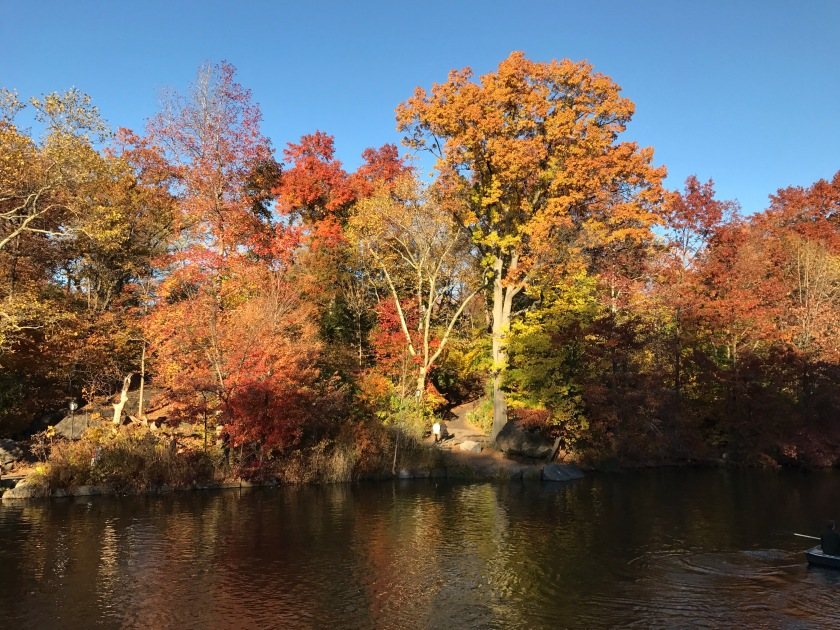 Fall colors at the Conservatory Water or the Model Boat Pond in Central Park, New York, USA